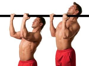 Подтягивания узким хватом — тренировка бицепса и спины